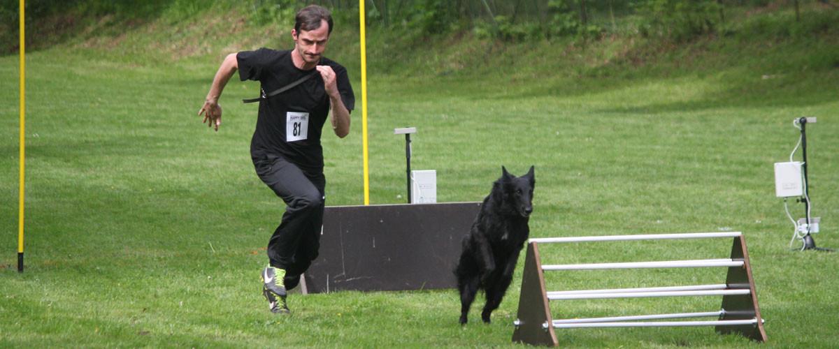 Permalink auf:Turnierhundesport