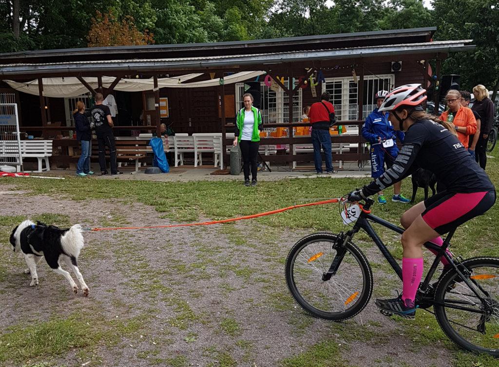 13. KemBerg Hunde-Triathlon 2017