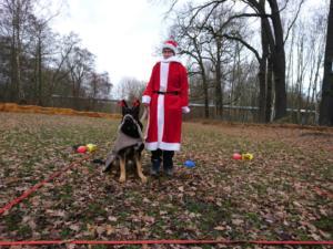 2018 Obedience Weihnachtstraining1